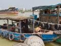 xingang-harbour-7