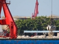 xiuying-harbour-5